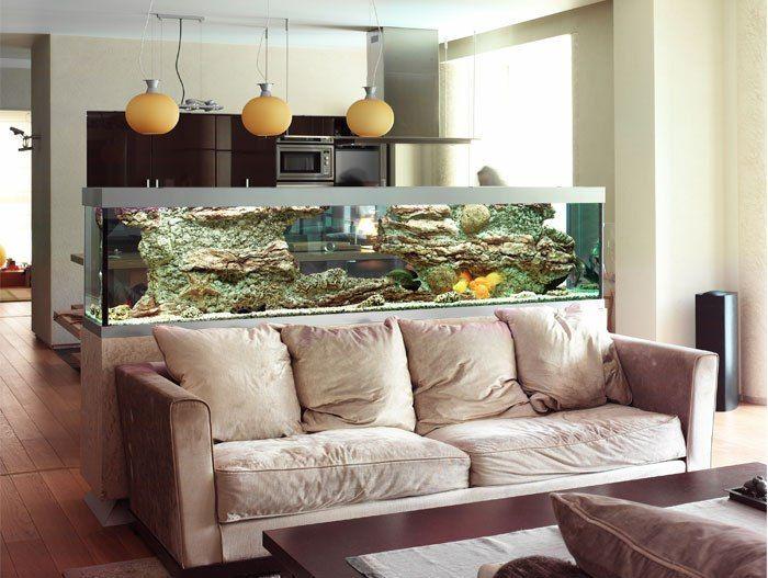 Inspirasi desain sekat ruang aquarium