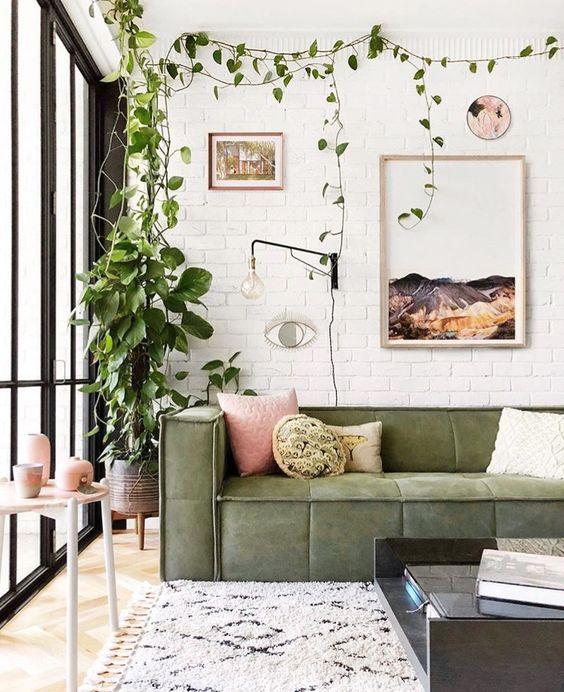 sentuhan hijau dari tanaman atau perabot