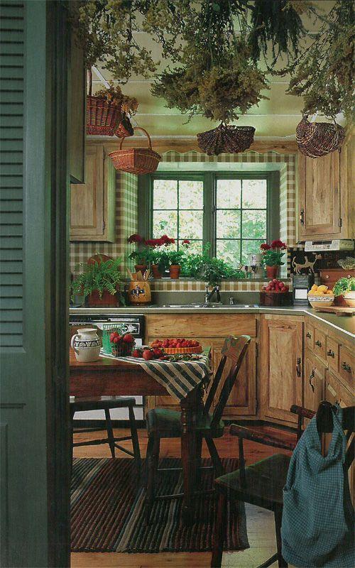 dekorasi rumah dengan tanaman di dapur