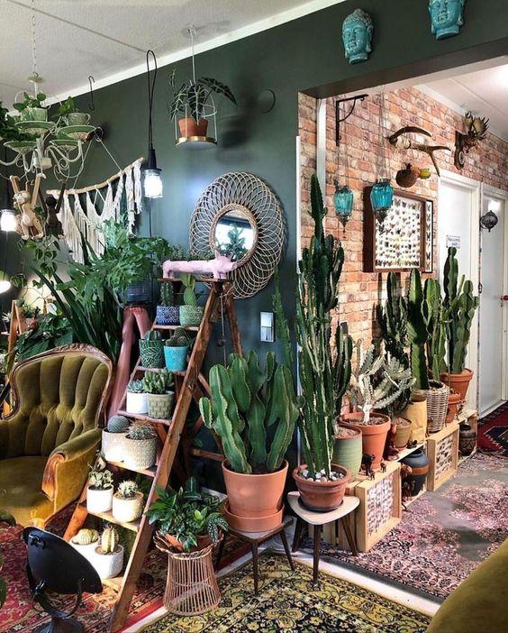 dekorasi rumah dengan tanaman