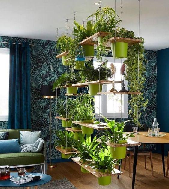 tanaman gantung di rumah