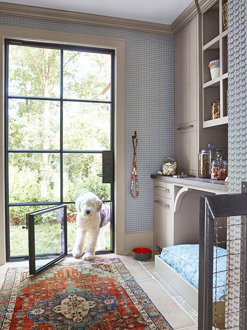 tips menciptakan rumah ramah hewan - pintu kecil khusus peliharaan