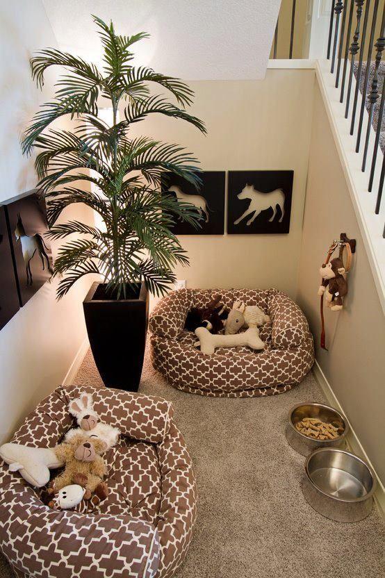 tips menciptakan rumah ramah hewan - ruang khusus hewan