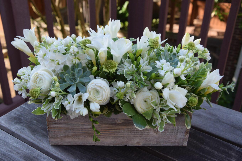 10 Jenis Bunga Warna Putih Yang Cantik Untuk Hiasan Rumah