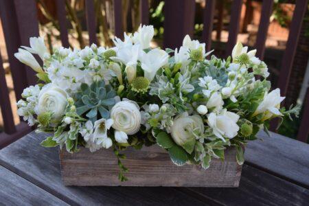 jenis bunga warna putih untuk dekorasi rumah