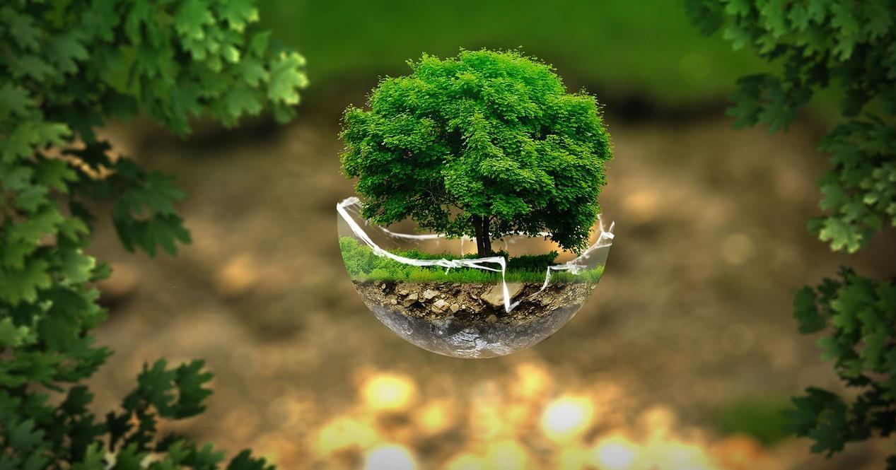 hari lingkungan hidup