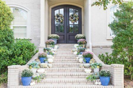 tanaman penghias pintu depan rumah